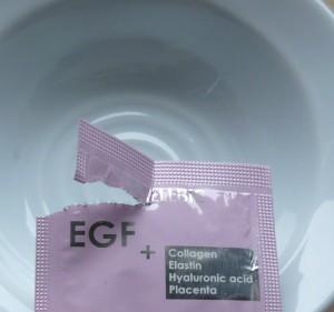 EGF感想